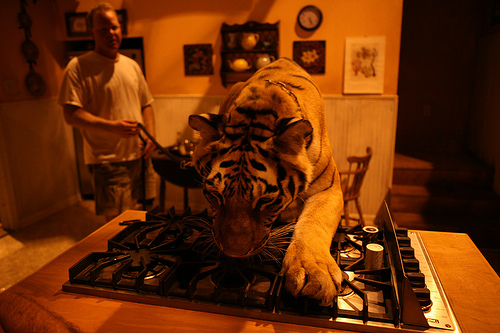 Tiger,Burning Bright,Carlos Brooks,Garret Dillahunt